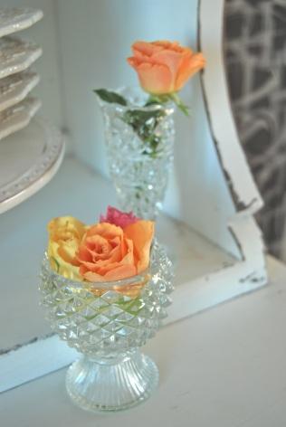 Vackert med färgstarka rosor